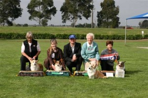 29th Restricted Obedience Trial - 2011 Winners