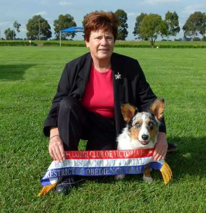 58th Open Show Amp 29th Restricted Obedience Trial Welsh